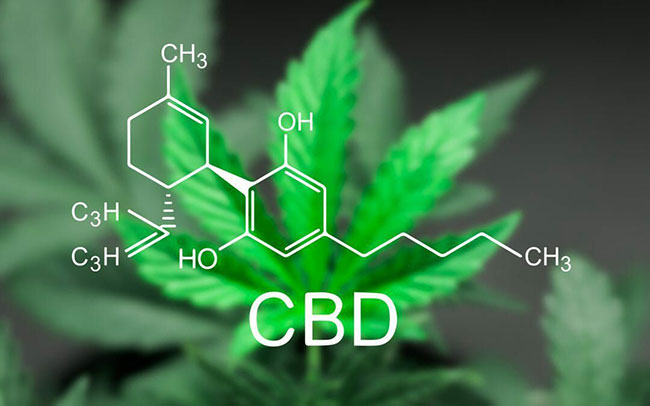 3 CBD Business Opportunities within this Booming Industry